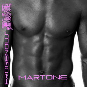 Electronic Dance Album by Martone, Erogenous Zone