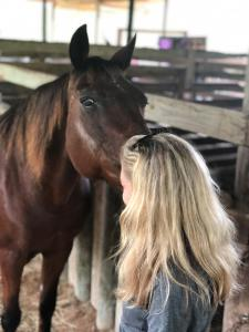 Animal Wellness Action Florida State Director Laurie Hood with local horses on the ground